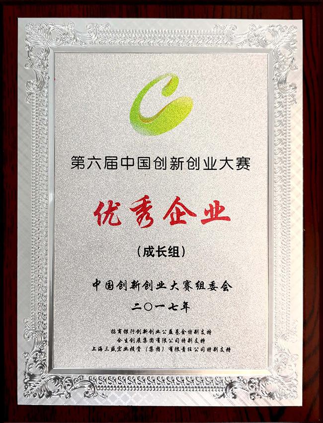 第六届中国创新创业大赛优秀企业.jpg